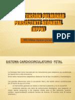 Hi Per Tension Pulmon Ar 2