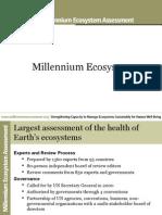 Millenium Ecosystem