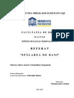Referat Master - Tarnauceanu Cristian - Spalarea Banilor - Umk Iasi 2013