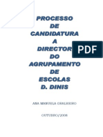 Candidatura a Director Projecto Final a Entrgar