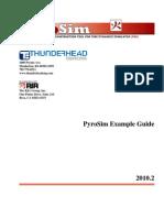 Pyro Sim Examples