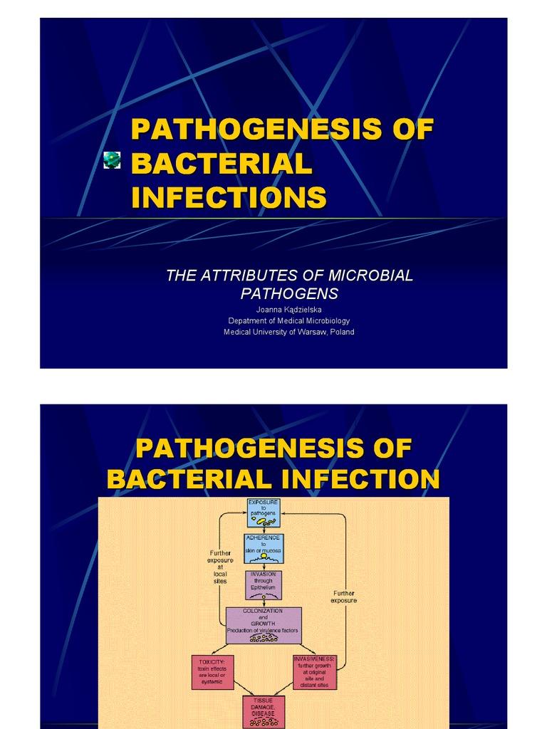 Mycobacterium tuberculosis virulence factors quizlet