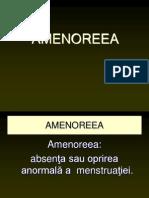 amenoreea1