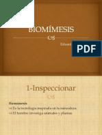 METODO IPLER BIOMIMESIS.pptx
