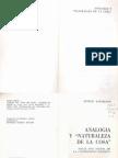 Kaufmann, Analogia y Naturaleza de La Cosa