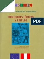 Prfesiones Tecnicas y Emlpeos
