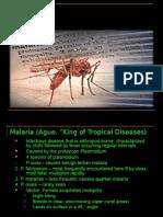 35409666-Malaria