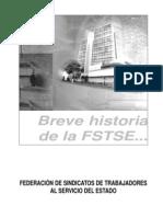 Historia FSTSE