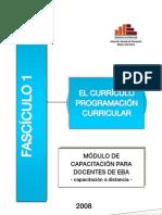 031 - Fasciculo 1 el Curriculo.pdf