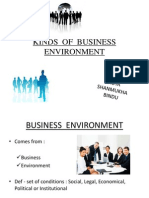 Kinds of Business Environment