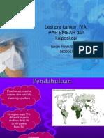 Lesi Pra Kanker, IVA, PAP SMEAR Nokik