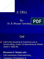 Cell by Dr. BBT for Paramedics