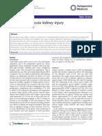 Perioperative Acute Kidney Injury