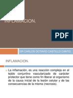 (7) Inflamacion A
