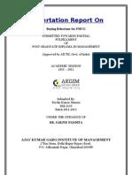 13887261 Dissertation Report