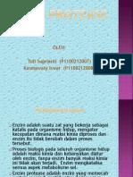 Enzim Protease