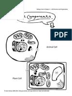25466098-BiologyForm4Chapter2–CellStructureandOrganisation