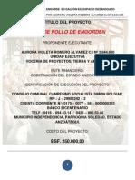 PROYECTO POLLO DE ENGORDEN AREO.pdf