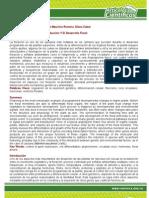 Articulo - Aspectos Moleculares de La Induccion y El Desarrollo Floral (Exa.unee.Edu.ar)
