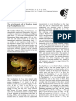 The advertisement call of Kandyan shrub frog (Pseudophilautus rus)