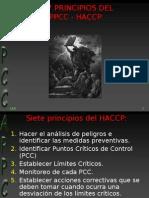 4 Appcc Los 7 Principios[1]
