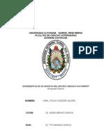 Informe Final de Yabare 2013