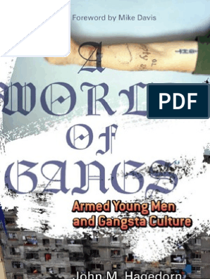 A World of Gangs Armed Young Men and Gangsta Culture
