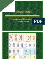 Cytogenetics Lesson 2