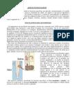 Inoculantes.pdf