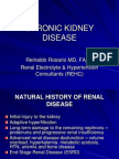 Chronic Kidney Disease-rosario