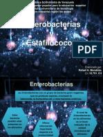 Microbiologia de Los Alimentos [Autoguardado]