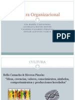 3 Cultura Organizacional2