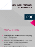 Anatomi Dan Fisiologi Konjungtiva