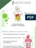 Fisiologia Digestiva - NUTRI 2011
