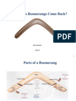 Esser - What Makes Boomerangs Come Back