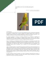Metodo de crianza de periquitos australianos.pdf