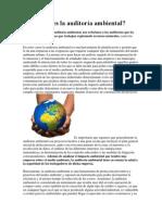 Qué es la auditoría ambiental.docx