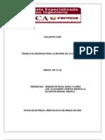 E-Commerce_tarea 2 (Plan de Negocios y Paginas Web)