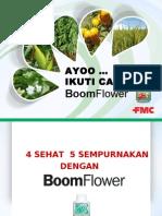 persentasi boomflower