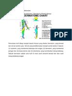 Skema Dermatom Dan Sklerotom