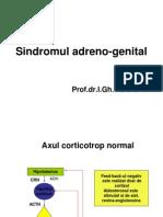 19. S. Adrenogenital Congenital