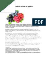 Medicamente din fructele de pădure 24mai2011