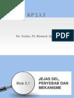 Blok 2.1 Jejas Sel%2C Penyebab Dan Mekanisme (1)