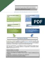 Resumen Real Decreto 795 2010