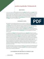 declaracion de partes.docx