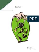 CEREBELO-SEMIOLOGIA