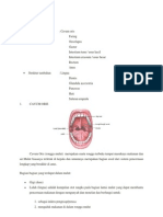 ANATOMI digestivus