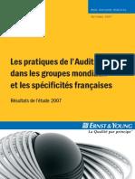 1007 Pratiques Audit Interne