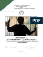 Дипломска работа - Пат кон малолетничка деликвенција -Андон  Дамовски