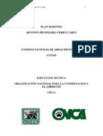 Informe Final Cahui